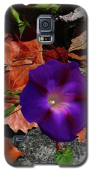 Purple Flower Autumn Leaves Galaxy S5 Case