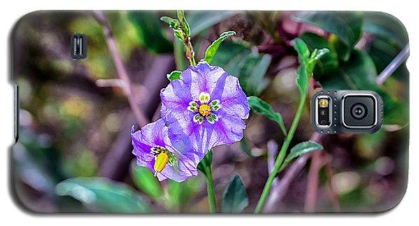 Purple Flower Family Galaxy S5 Case