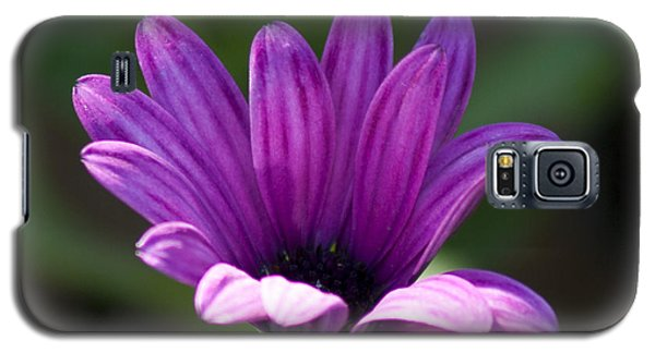 Purple Flower Galaxy S5 Case