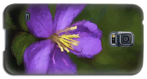Galaxy S5 Case featuring the photograph Purple Flower Macro Impression by Dan McManus