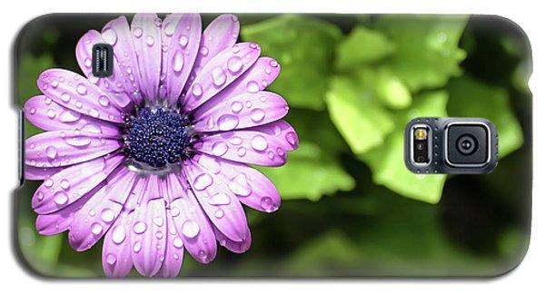 Purple Flower On Green Galaxy S5 Case