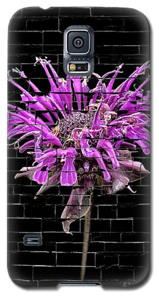 Purple Flower Under Bricks Galaxy S5 Case