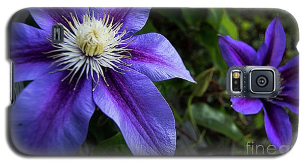 Galaxy S5 Case featuring the photograph Purple Flowers by Brian Jones