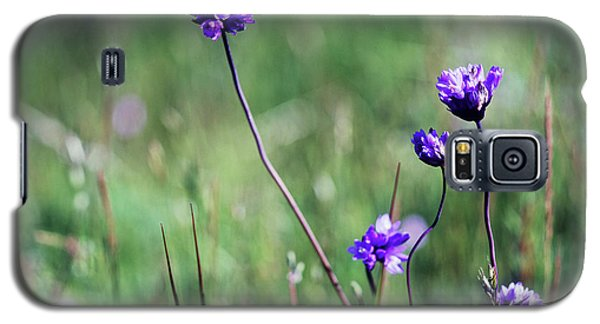 Galaxy S5 Case featuring the photograph Purple Flowers by Jim and Emily Bush