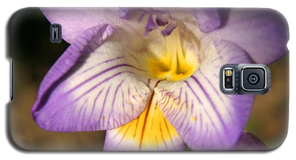 Purple Fresia Flower Galaxy S5 Case by Ralph A  Ledergerber-Photography