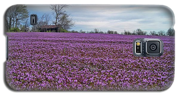 Galaxy S5 Case featuring the photograph Purple Haze by Cricket Hackmann