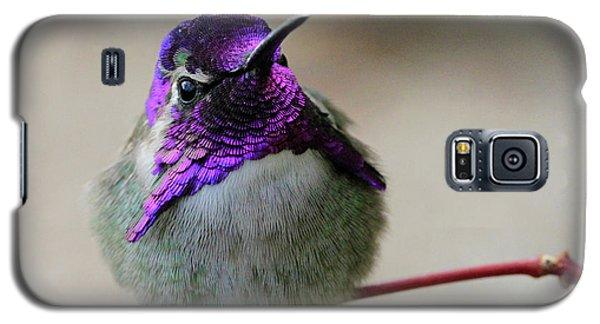 Purple Head Galaxy S5 Case