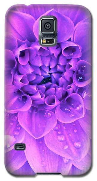 Galaxy S5 Case featuring the photograph Purple Too by Cathy Dee Janes