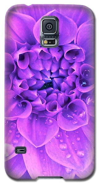 Purple Too Galaxy S5 Case by Cathy Dee Janes