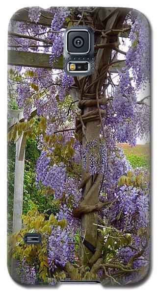 Purple In Priory Park Galaxy S5 Case