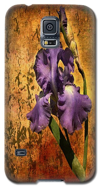 Purple Iris At Sunset Galaxy S5 Case by Bellesouth Studio