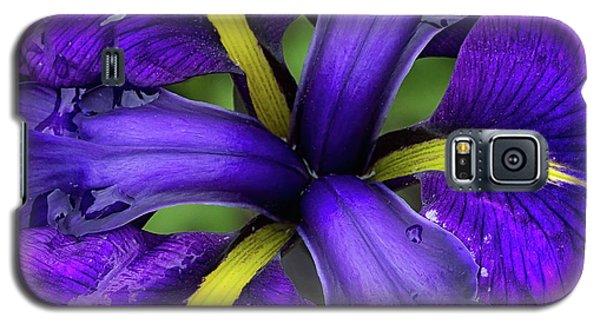 Purple Iris Centre Galaxy S5 Case