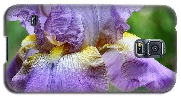Purple Iris Flower Galaxy S5 Case