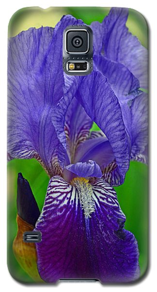 Purple Iris Galaxy S5 Case by Lisa Phillips