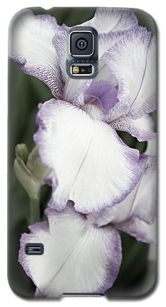 Galaxy S5 Case featuring the photograph Purple Is Passion by Sherry Hallemeier