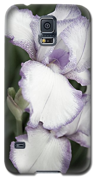 Purple Is Passion Galaxy S5 Case