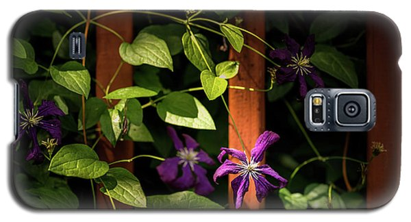 Purple Jackmanii Clematis Galaxy S5 Case by Onyonet  Photo Studios