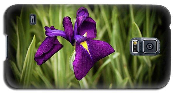 Galaxy S5 Case featuring the photograph Purple Japanese Iris by Joann Copeland-Paul