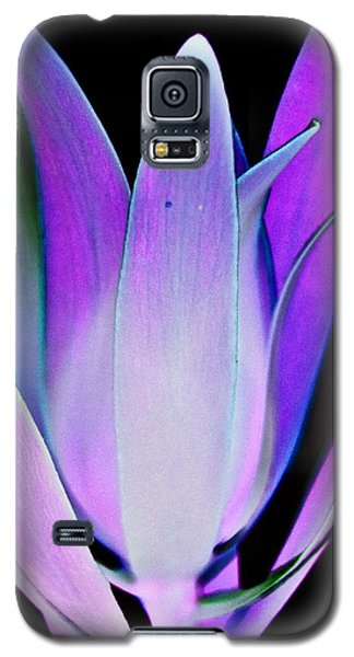 Galaxy S5 Case featuring the photograph Purple by John Hansen