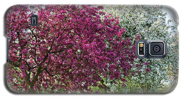 Galaxy S5 Case featuring the photograph Purple Leaved Crab Apple Blossom In Spring by Tim Gainey