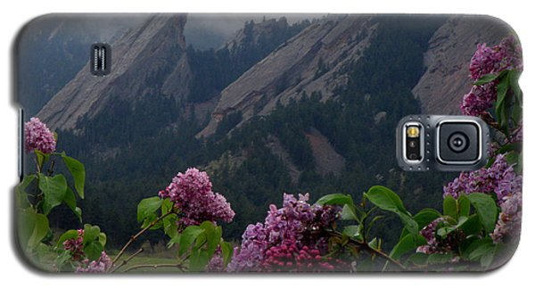 Purple Lilacs Flatirons Galaxy S5 Case