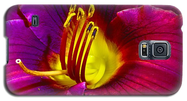 Galaxy S5 Case featuring the photograph Purple Lily by Bill Barber