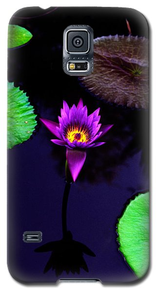 Galaxy S5 Case featuring the photograph Purple Lily by Gary Dean Mercer Clark