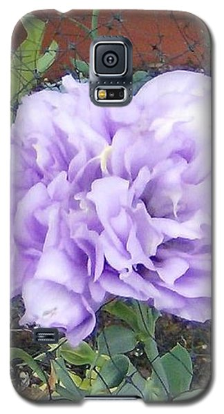 Galaxy S5 Case featuring the photograph Purple Lisianthus by Skyler Tipton