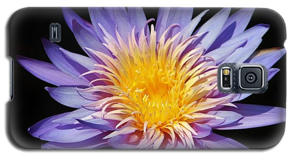 Purple Lotus Galaxy S5 Case