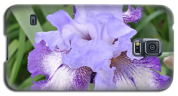 Purple Love Galaxy S5 Case by Marsha Heiken
