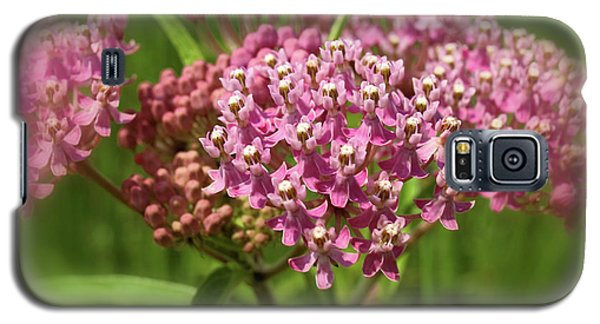 Galaxy S5 Case featuring the photograph Purple Milkweed by Scott Kingery