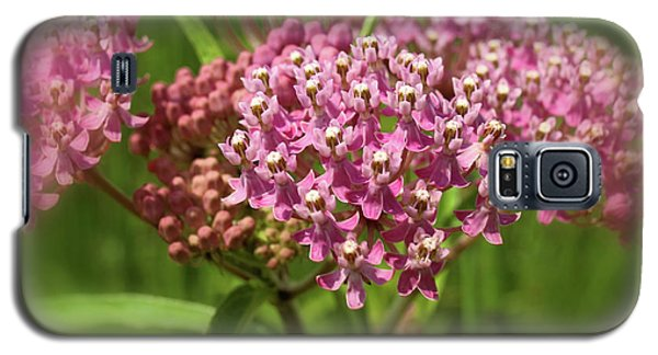 Purple Milkweed Galaxy S5 Case by Scott Kingery