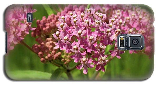 Purple Milkweed Galaxy S5 Case