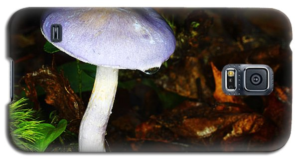 Purple Mushroom Russula Cyanoxantha Galaxy S5 Case by Andrew Pacheco