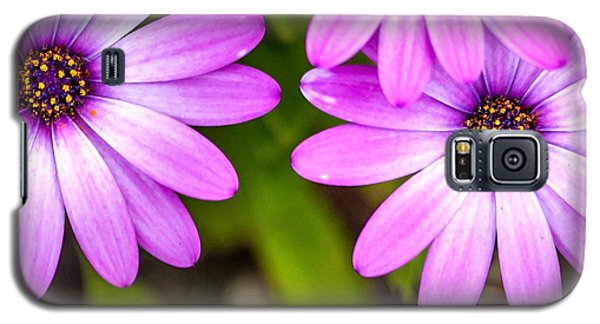 Purple Petals Galaxy S5 Case