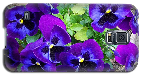 Galaxy S5 Case featuring the photograph Purple Pansies by Sandi OReilly