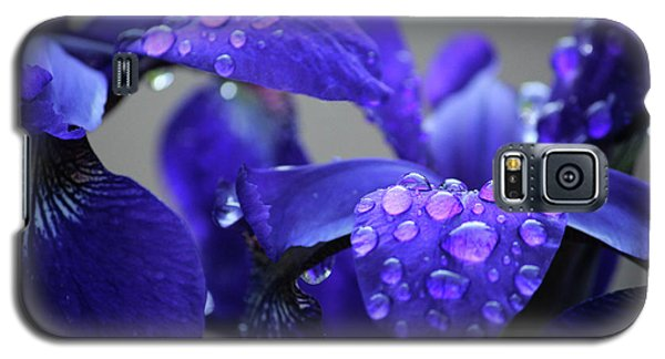 Galaxy S5 Case featuring the photograph Purple Passion by Rowana Ray