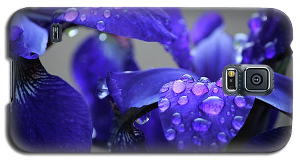 Purple Passion Galaxy S5 Case by Rowana Ray