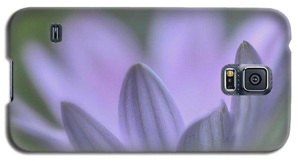 Purple Petals Galaxy S5 Case