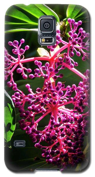 Purple Plant Galaxy S5 Case