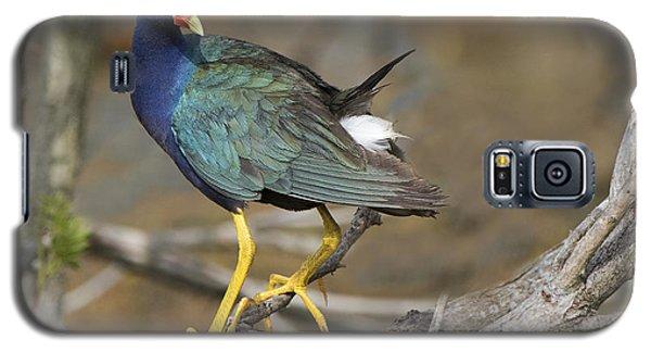 Purple Pleasing Galaxy S5 Case