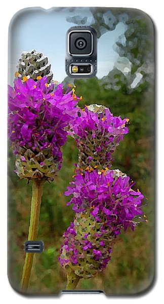 Purple Prairie Clover Galaxy S5 Case