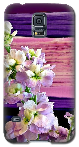 Galaxy S5 Case featuring the photograph Purple Purple Everywhere by Marsha Heiken