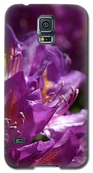 Galaxy S5 Case featuring the photograph Purple Rhododendron by Baggieoldboy