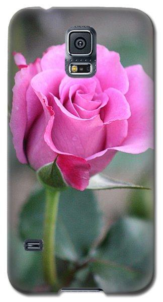 Purple Rose Galaxy S5 Case