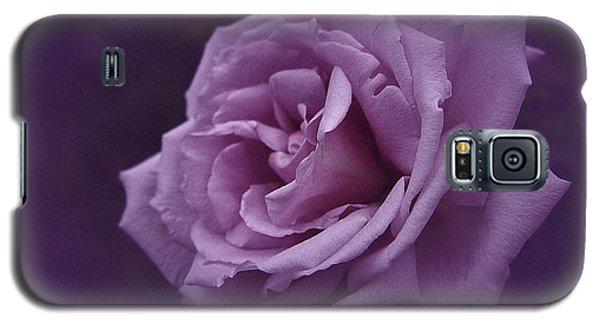 Purple Rose Of November Galaxy S5 Case by Richard Cummings