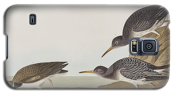 Purple Sandpiper Galaxy S5 Case by John James Audubon