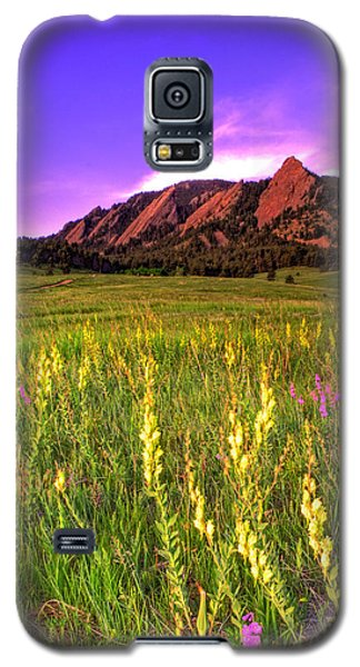 Purple Skies And Wildflowers Galaxy S5 Case