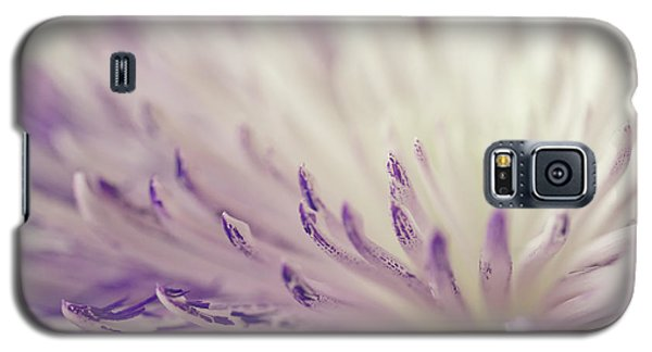 Purple Spider Mum Macro Galaxy S5 Case