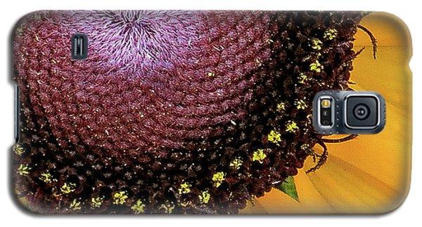 Purple Spirals Galaxy S5 Case